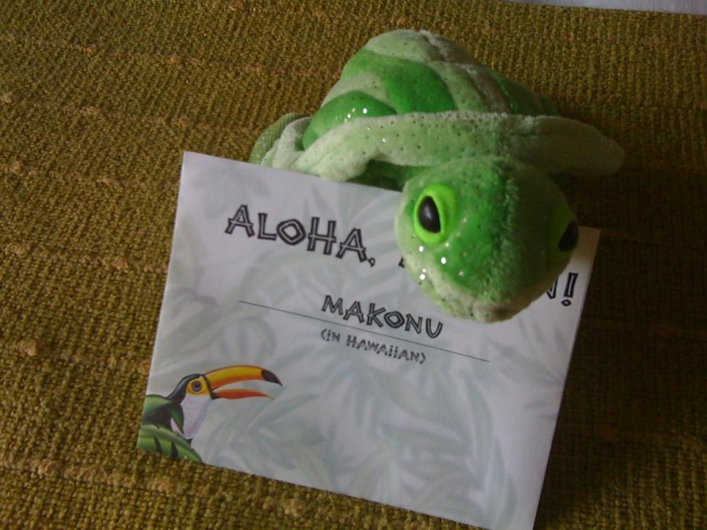Hawaiian Name